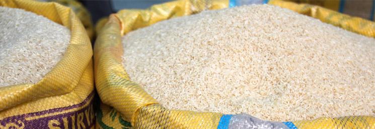 preguntas-respuestas-el-arroz-y-la-salud